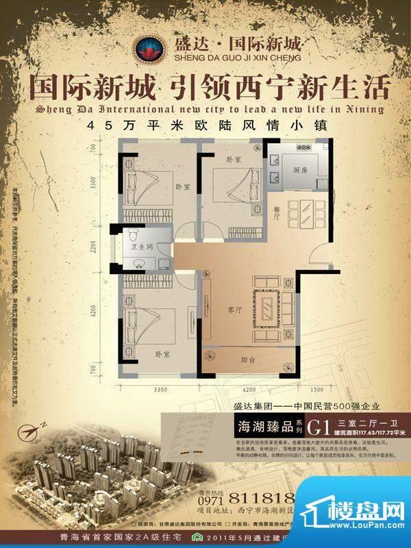 盛达国际新城G1户型面积:117.63m平米