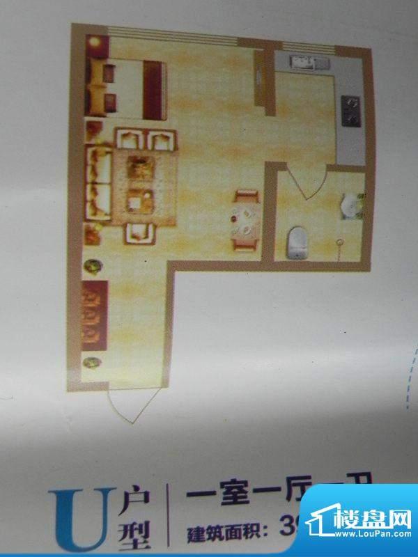 中环首府U户型 1室1面积:39.06m平米