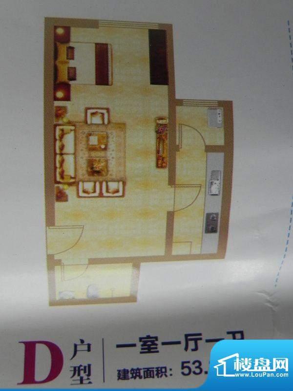 中环首府D户型 1室1面积:53.89m平米