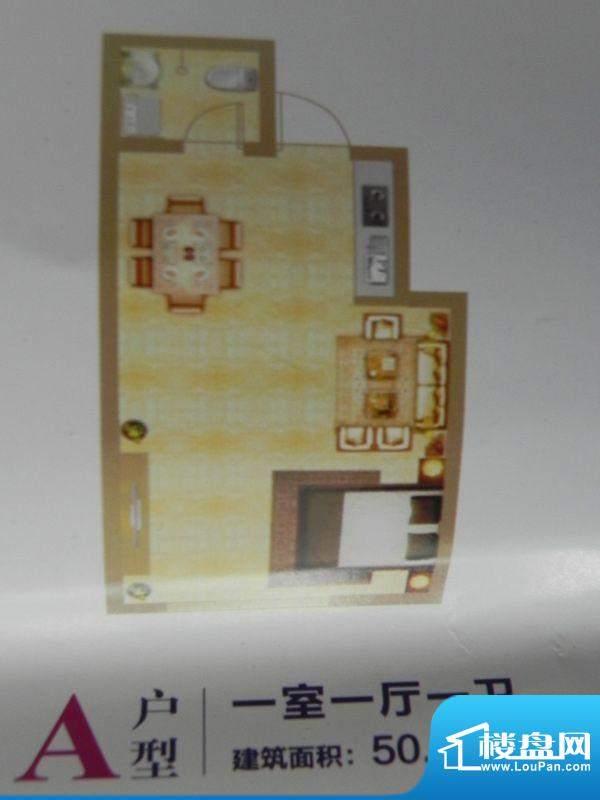 中环首府A户型 1室1面积:50.32m平米