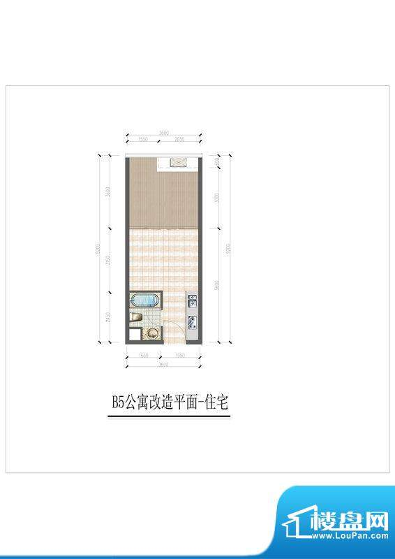 大华锦绣国际B5户型面积:50.00m平米