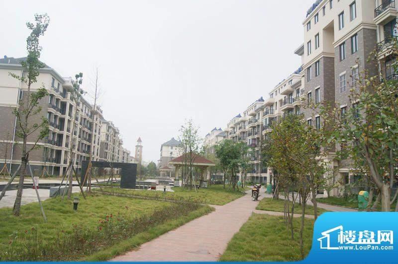 安天国际城20111013实景图