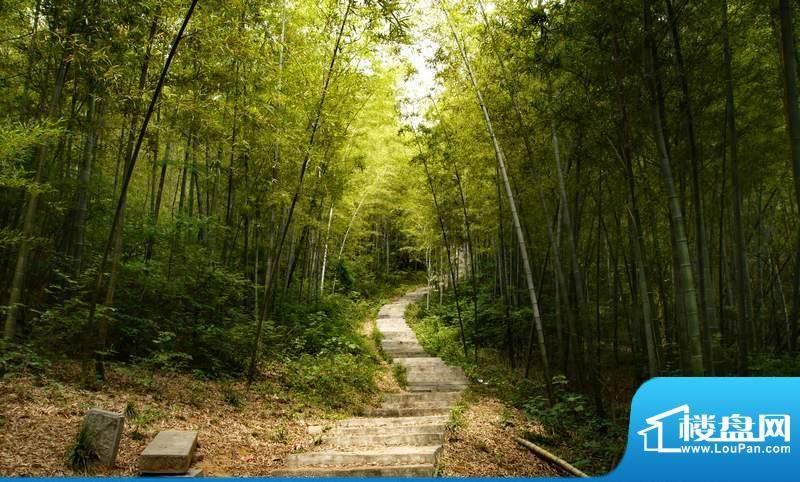 龙湾水文化度假主题公园实景图