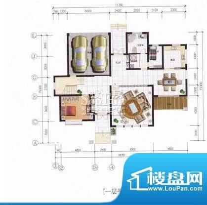 秀水山庄B户型别墅一面积:526.43m平米