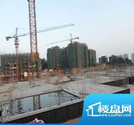 七星海棠在建工地内部(2012.8.8)