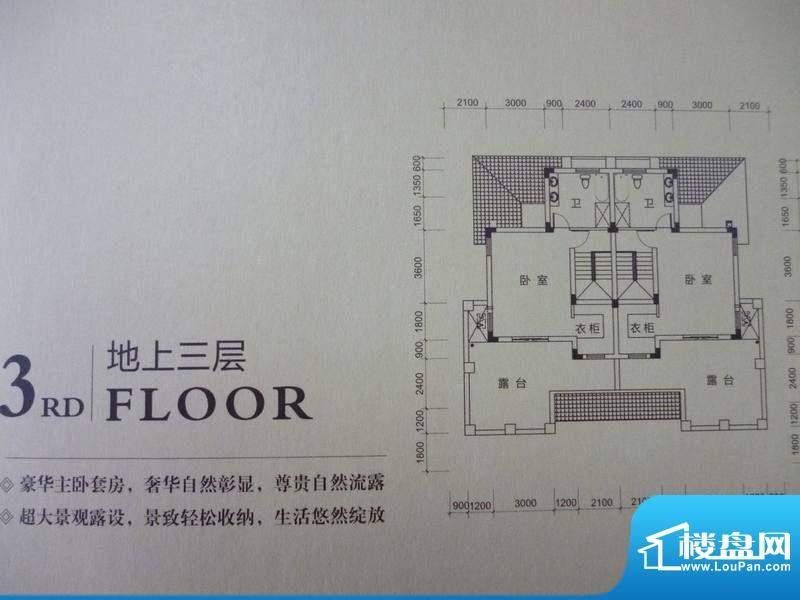 长岛一墅J户型面积:343.00平米