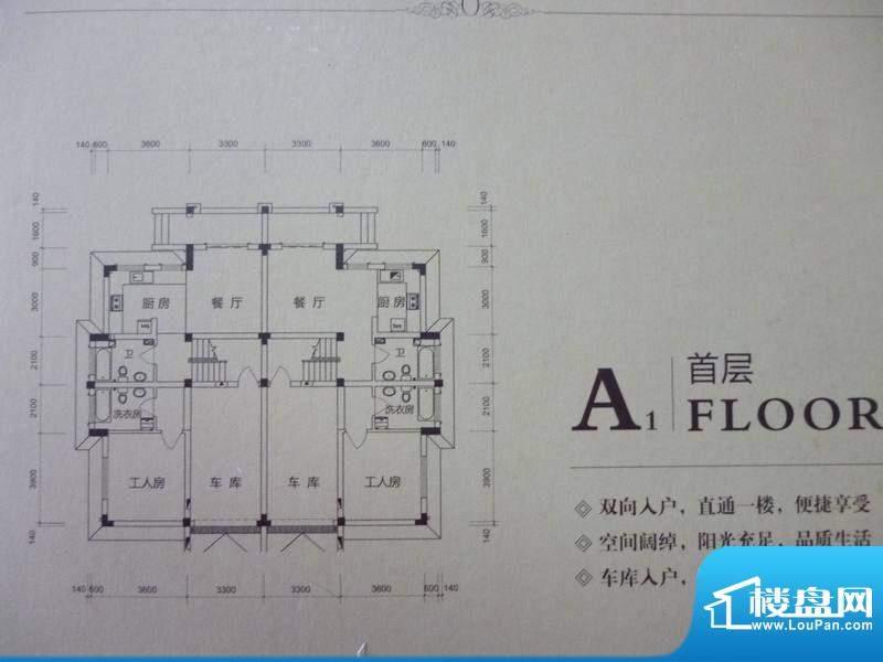 长岛一墅A户型面积:289.00平米