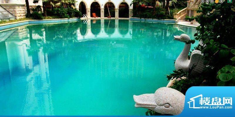 恒大绿洲泳池实景图