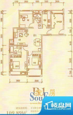 龙熙国际B1三室二厅面积:0.00m平米