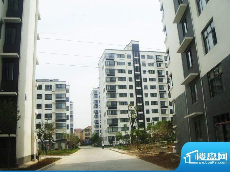 富邦新都小区外景(2012-05)