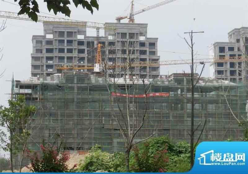上城国际实景图