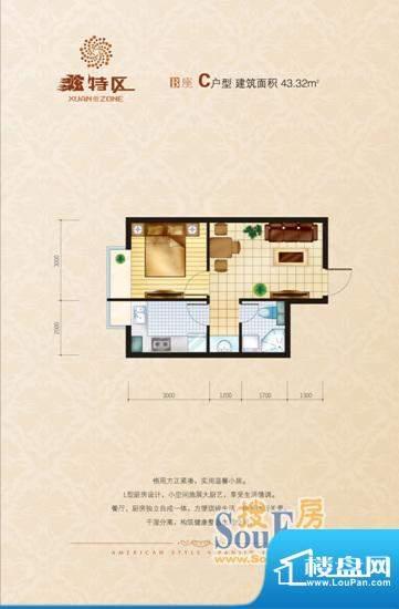 炫特区B栋C户型 1室面积:43.32m平米