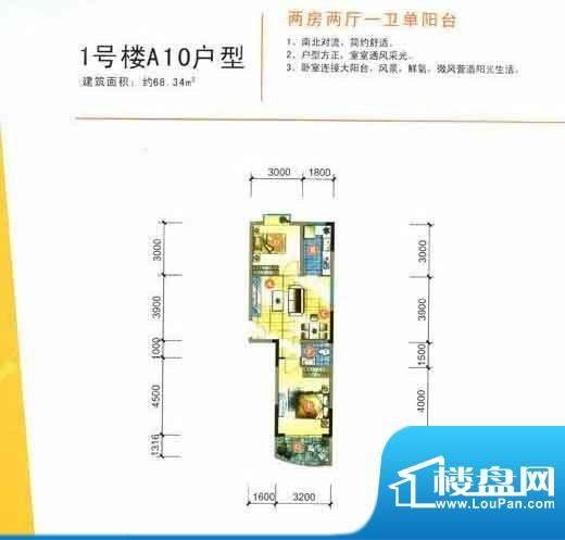 丽嘉花园1号楼A10户面积:0.00m平米