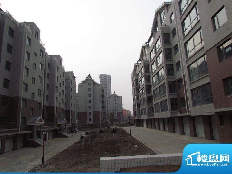 金城丽景湾三期小区内景(2011-12)