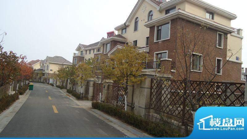 金城·山海一品小区实景图(2011-11)