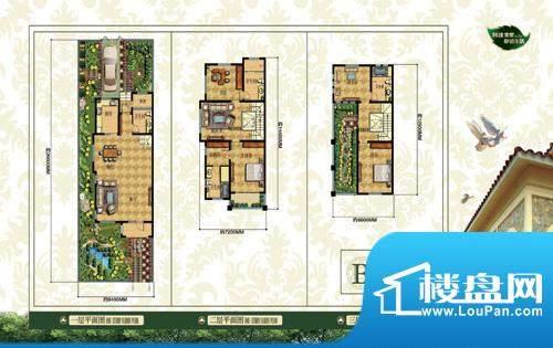 香溪翠庭户型图3 面积:0.00m平米