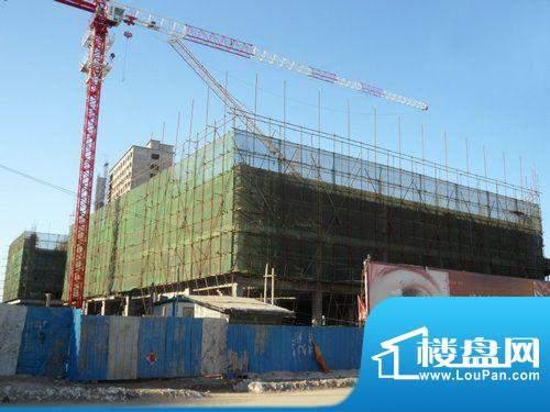 中立诚·悦府工程进度实景图201112