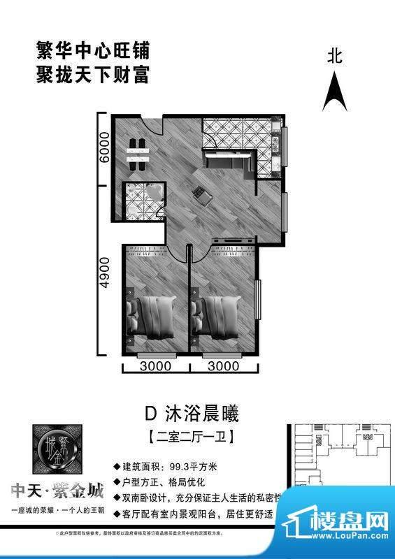 中天·紫金城D户型2面积:99.30平米