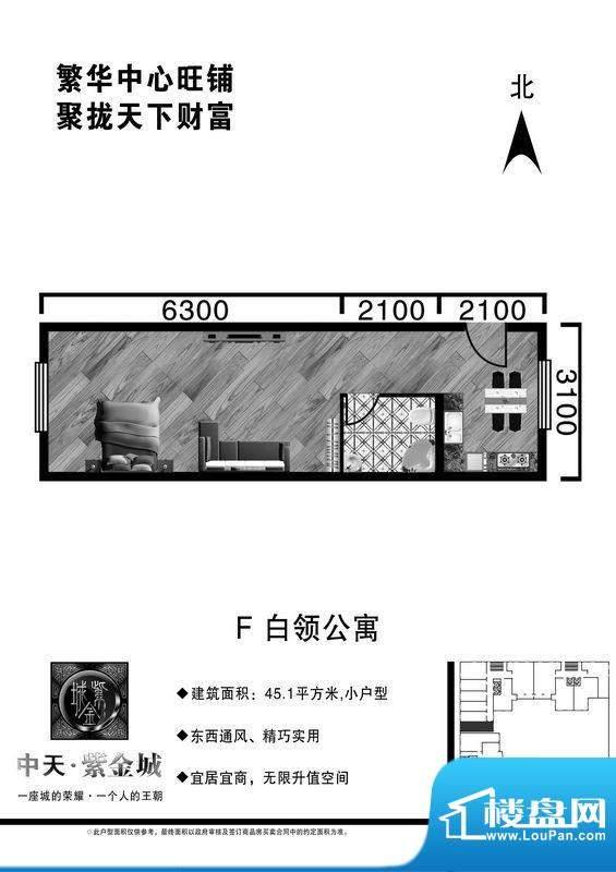 中天·紫金城F户型公面积:45.10平米