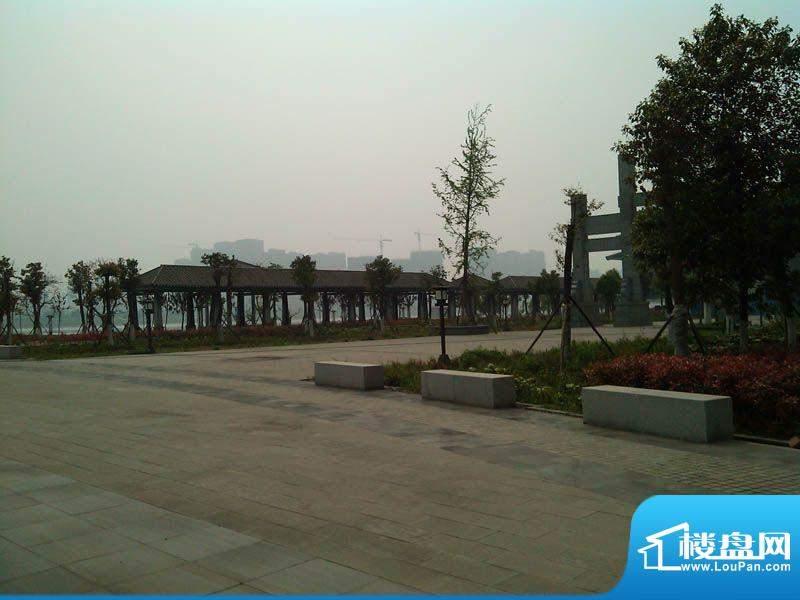 龙湾上城实景图