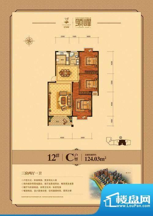 东方家园12#/C户型 面积:124.03m平米