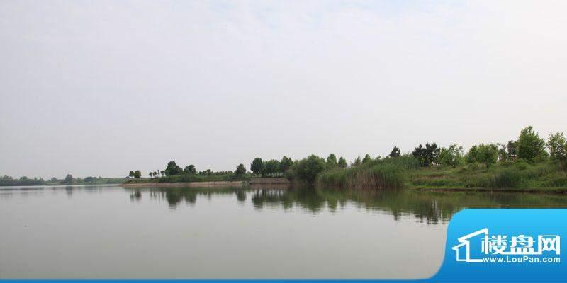 红莲湖果岭壹号湖岸实景(20120716)