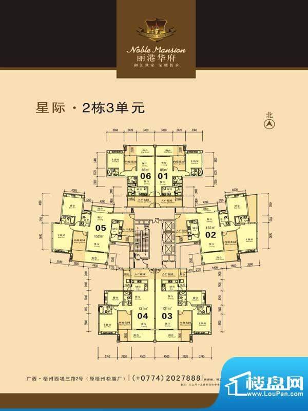 丽港华府星际2栋3单面积:0.00m平米