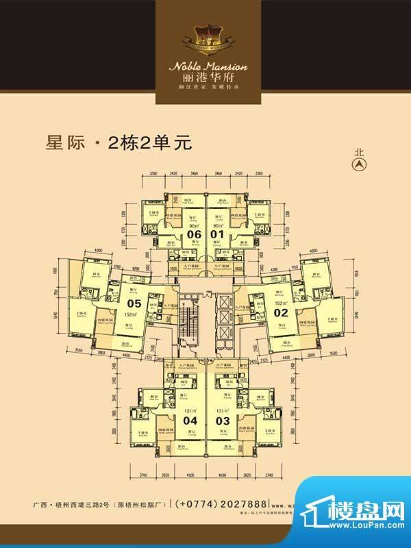 丽港华府星际2栋2单面积:0.00m平米