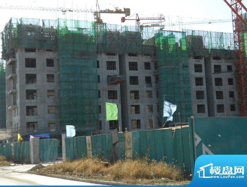 北京城建徜徉集施工实景图2011.11