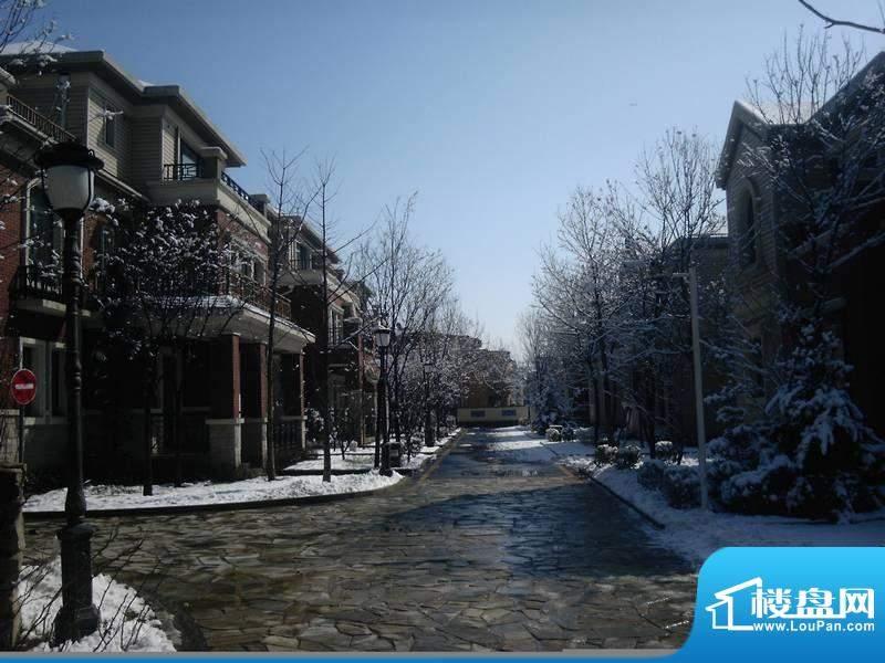 城与墅园林实景图201203
