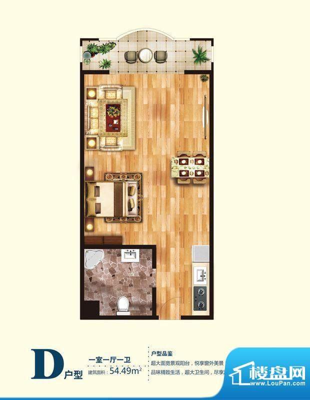 观澜国际公寓D户型图 1室1厅1卫面积:54.49平米