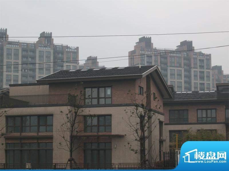 阳光花城外景图(2010.3)