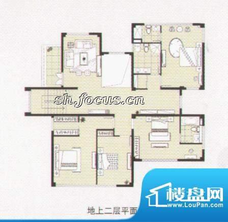 阳光花城双拼IE户型 地上一层 面积:518.00平米