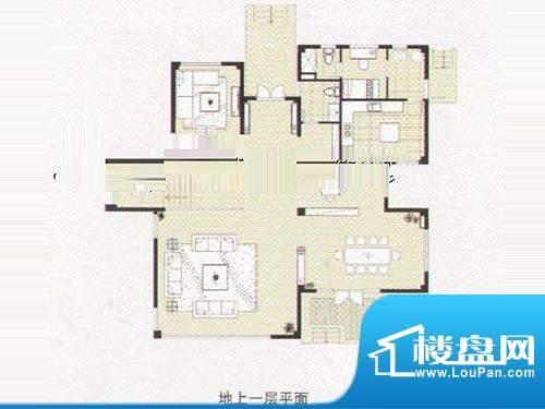 阳光花城双拼IE户型 地上二层 面积:518.00平米