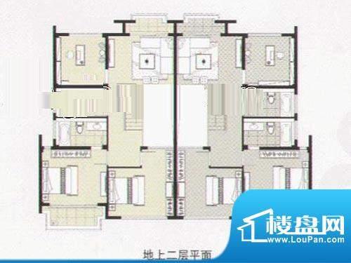 阳光花城双拼IF户型 地上二层 面积:317.00平米