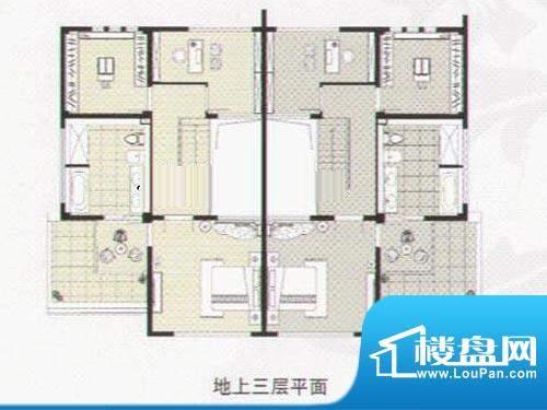阳光花城双拼IF户型 地上三层 面积:317.00平米