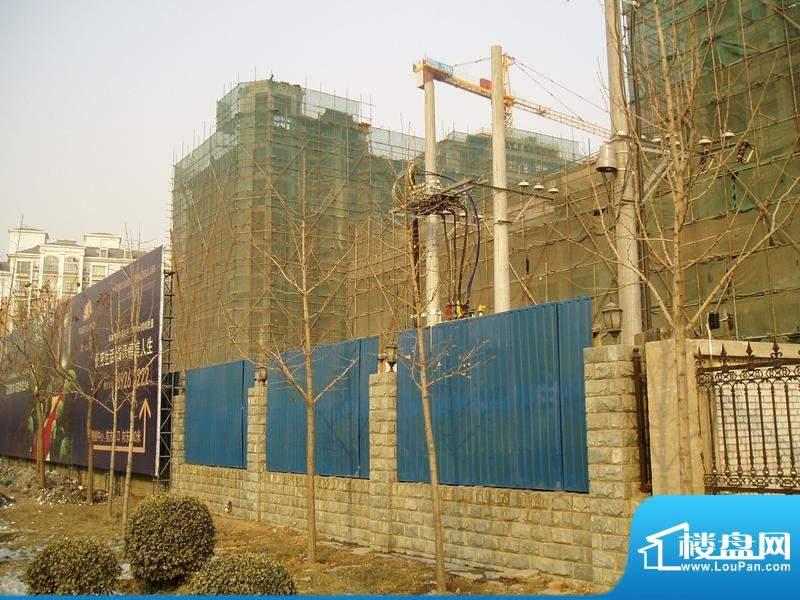 博悦府施工实景图2010.01.26