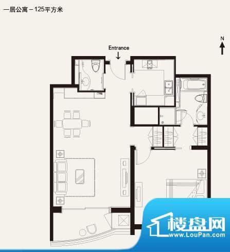 棕榈泉白金公寓1居户型 1室2厅面积:125.00平米