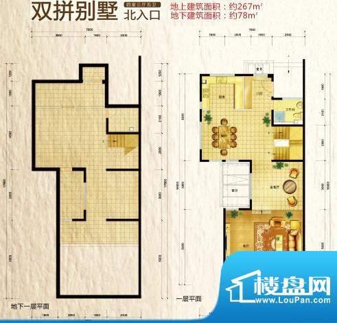 领秀新硅谷双拼北入口 4室3厅4面积:267.00平米