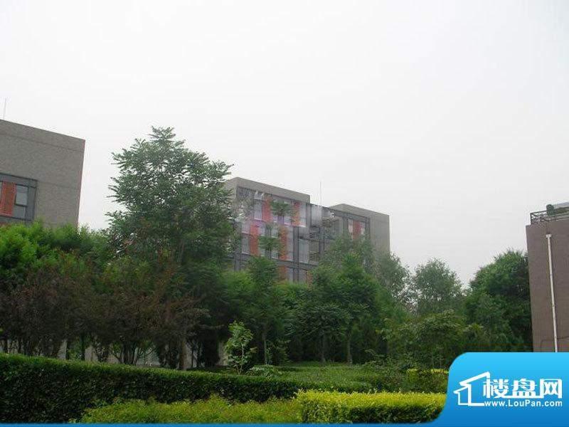 桥南王庄子居住项目用地实景图