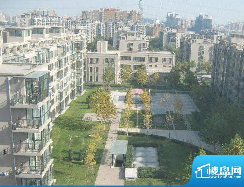 美丽星苑二期小区实景图200911