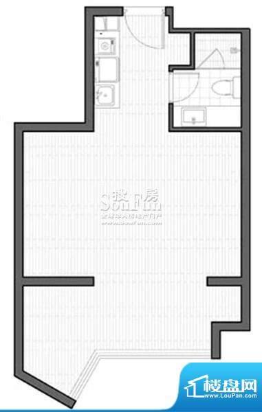 智地·钻河公馆C1户型 1室1厅1