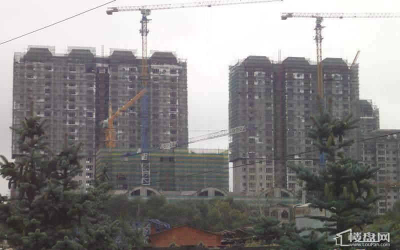 天悦项目高层实景图(2012-09-04)