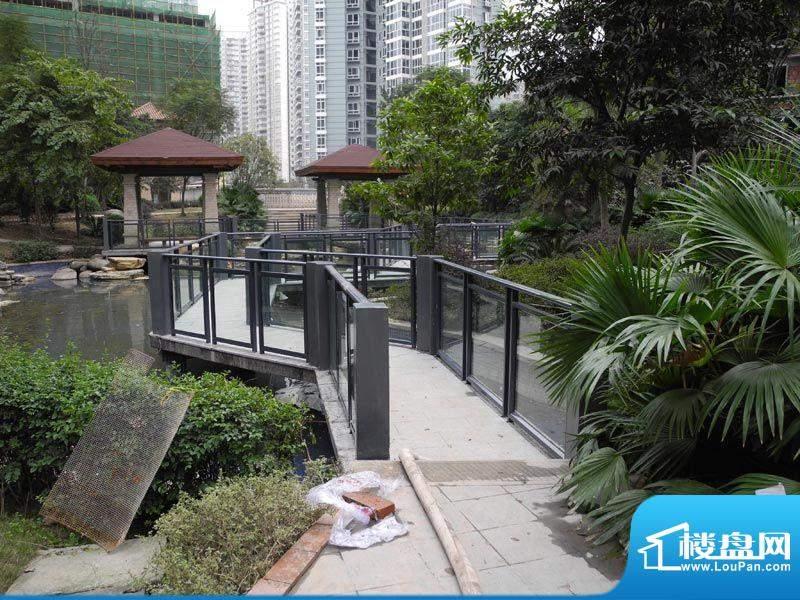 滨江国际花园实景图
