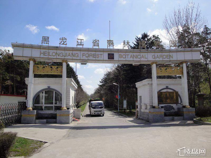 金色桃源黑龙江省森林植物园