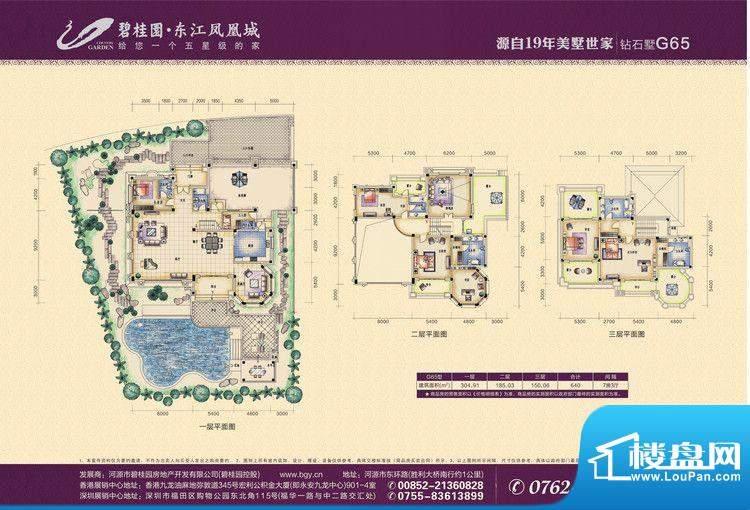 碧桂园东江凤凰城G6面积:0.00m平米