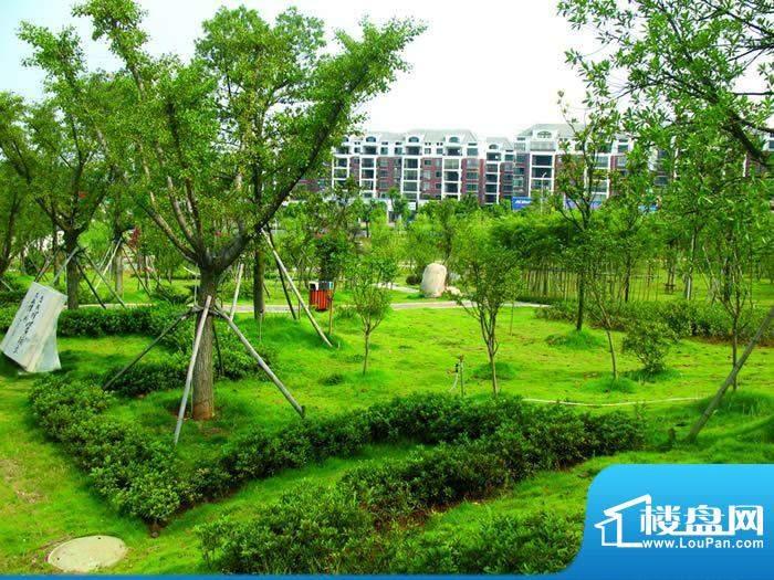 尚东国际公馆交通图