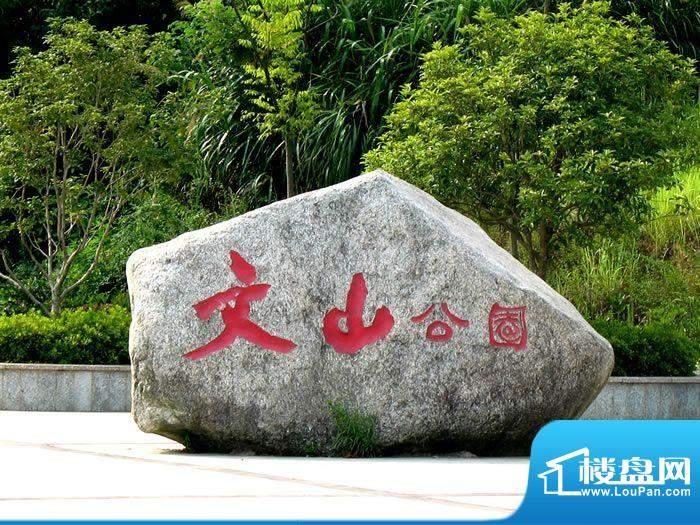 尚东国际公馆实景图