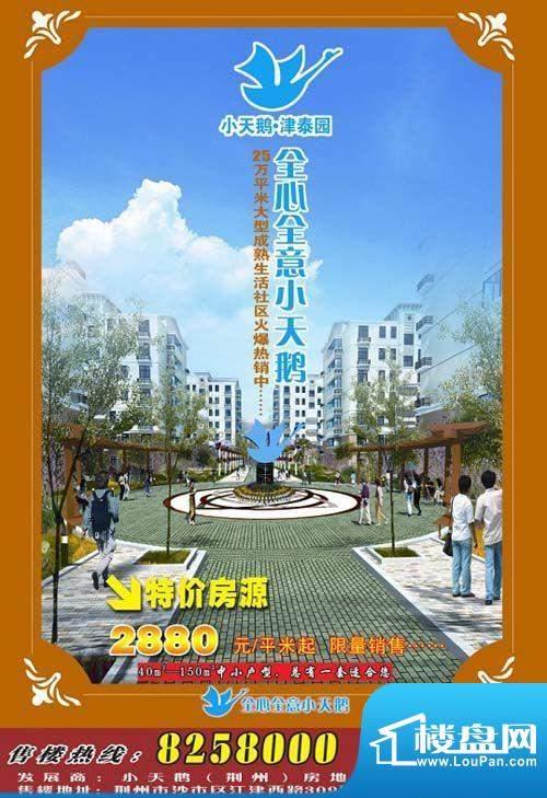 小天鹅·津泰园xiaoguo