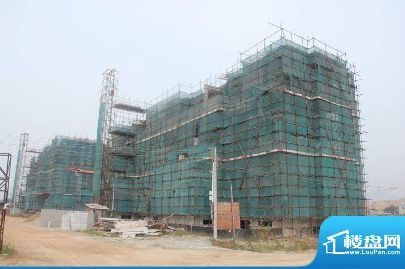 金泽蓝湾施工进展实景图(2012-10)